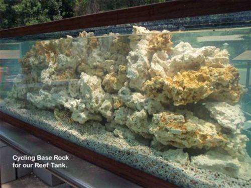 Живые камни для аквариума