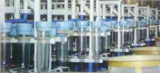 Фрагмент инкубационного цеха (для инкубации икры и личинок, культивации артемии, профессиональной рыборазводни