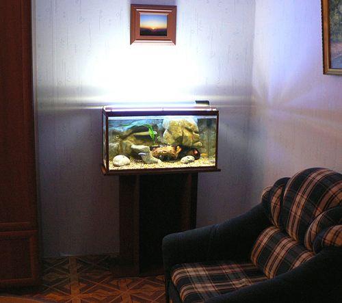 Объемный фон для аквариума своими руками
