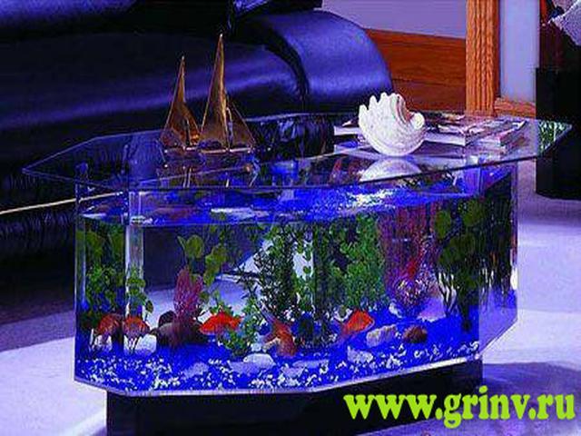 Как сделать свой аквариум красивым